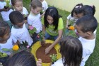 Piraí: Projeto Movimento Verde busca novos parceiros para 2017